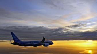 Boeing 787 dreamliner nature Wallpaper
