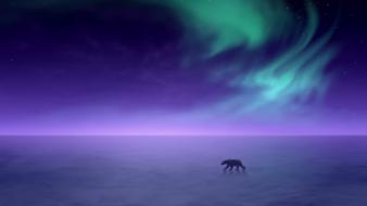 Arctic aura polar bears Wallpaper