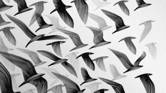 Artwork birds flying greyscale wallpaper
