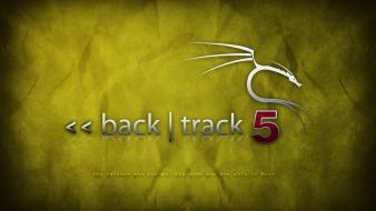Backtrack 5 yellow wallpaper
