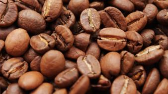Brown coffee beans food macro Wallpaper