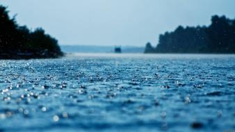 Depth of field glass nature rain water drops wallpaper