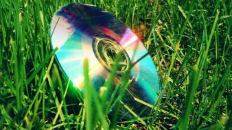 Compact disc green nature technology wallpaper