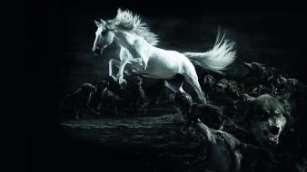 Animals jumping illustrations horses wolves wallpaper