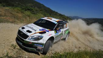 Car off-road skoda fabia s2000 intercontinental challenge wallpaper