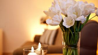 Couch flowers tulips candles wallpaper