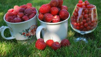Fruits food grass raspberries strawberries berries bowl wallpaper