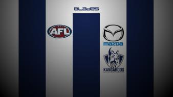 Kangaroos north melbourne wallpaper
