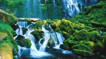 Landscapes forest falls national oregon waterfalls proxy wallpaper