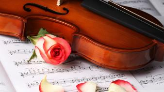 Nature music flowers violins classical Wallpaper