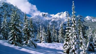 Nature winter lakes washington wallpaper