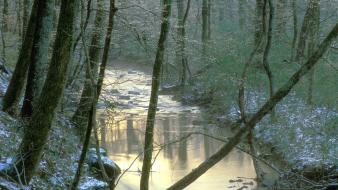 Nature winter tennessee creek wallpaper