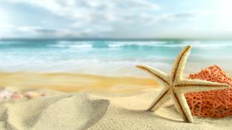 Ocean beach sand stars starfish sea Wallpaper