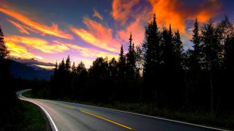 Sunset clouds landscapes trees streets forest roads wallpaper