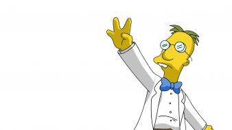 The simpsons professor frink wallpaper
