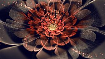 Abstract flowers fractals wallpaper