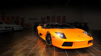 Cars tuning lamborghini murcielago wallpaper