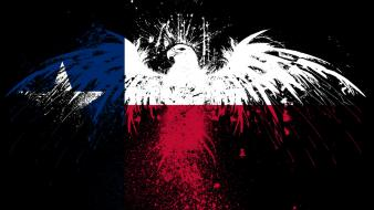 Eagles hawk flags usa texas state wallpaper