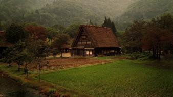 Japan mountains grass fields japanese farm wallpaper