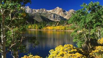 Landscapes forest twin california national lakes wallpaper