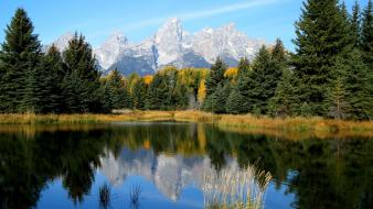 Mountains trees forest lakes wallpaper