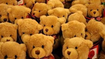 Toys (children) teddy bears wallpaper