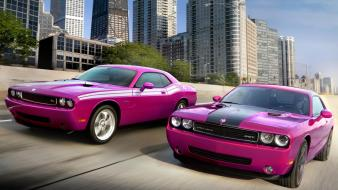 Cars violet purple dodge challenger srt8 two wallpaper