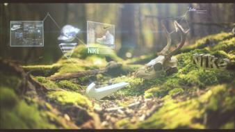 Forest nike cinema4d after effects wallpaper