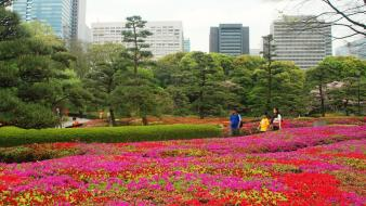 Japan flowers people buildings spring (season) japanese gardens wallpaper