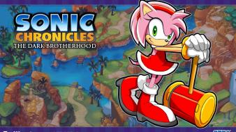 Video games sonic chronicles Wallpaper