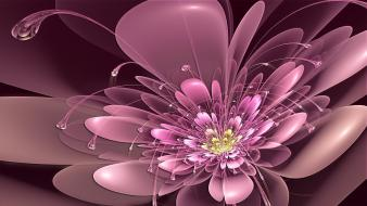 Abstract flowers deviantart digital art june Wallpaper