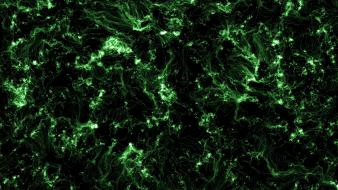 Green abstract dark wallpaper