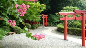 Japan flowers japanese gardens hedges wallpaper
