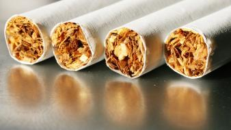 Tobacco cigarettes still life wallpaper
