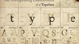 Anatomy typography font alphabet drawings diagram typefaces Wallpaper