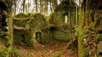 Autumn (season) ruins forest leaves ireland moss wallpaper