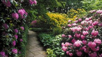 Flowers germany garden hannover Wallpaper