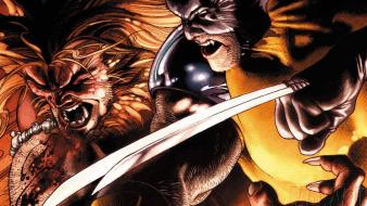 Wolverine marvel comics sabretooth Wallpaper