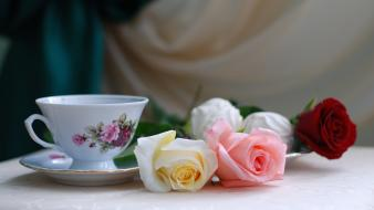 Flowers tea cups Wallpaper