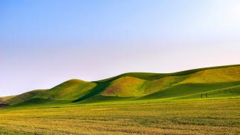 Landscapes nature grass fields hills clear blue sky wallpaper
