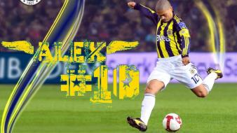 Sports soccer turkey fenerbahce alex de souza ezik wallpaper