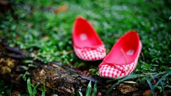 Women shoes checkered Wallpaper