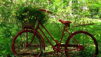 Bike red flowers bicycles garden Wallpaper