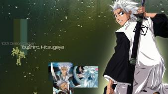 Bleach hitsugaya toshiro wallpaper