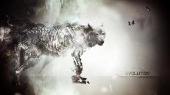 Dark evolution artwork speedart wolves wallpaper