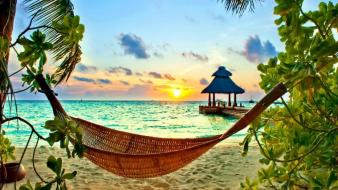 Hammock palm trees branches rays exotic bungalow wallpaper