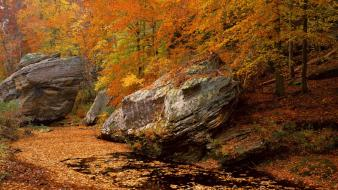 Landscapes autumn (season) forest national illinois smith area wallpaper