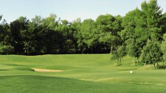 Landscapes trees golf course wallpaper