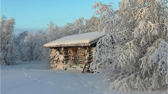 Nature winter trees houses wallpaper