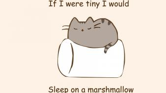 Paintings minimalistic text cats quotes marshmallow phrase simple wallpaper